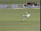 Flying slip: brilliant catch by Kane Williamson (PSS)